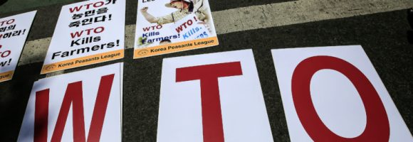 Demonstrators Gather Outside Indonesia's WTO Conference